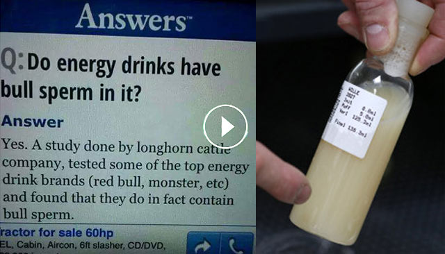 Energy Drink Ingredients Bull Urine