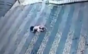 baby falls from building